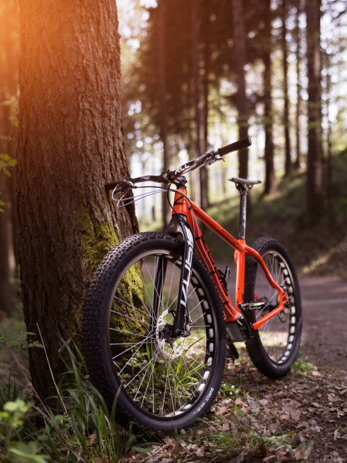 Kubis Fat Tire Bike 29+
